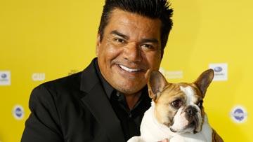 World Dog Awards -
