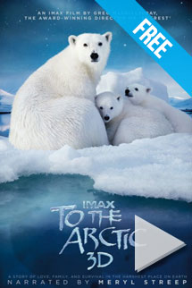 To The Arctic  -