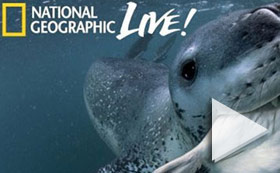 National Geographic Live  Nat Geo -