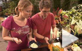 Mexico One Plate At a Time  Live Well -