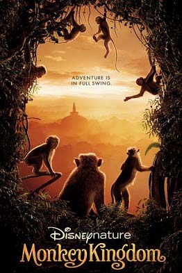 Monkey Kingdom - G